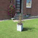 Vorgarten mit Kunstrasen Green Paradise