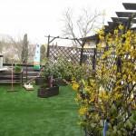 Kunstrasen für Dachterrasse: Produkt Green Natural!