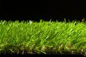 Green Cerelia